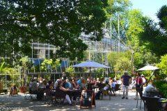 Terraza del bar del Hortus Botanicus Ámsterdam