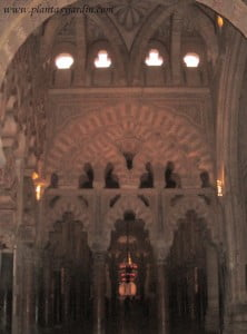 arcos entrelazados en la Mezquita de Cordoba