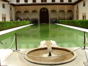 Patio de los Arrayanes de estilo arabigo andaluz en el Palacio de Comares en La Alhambra