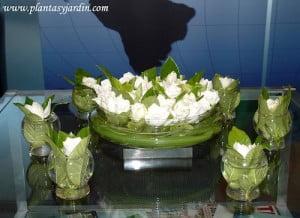 Gardenia augusta bouquet con hojas de Cortadera