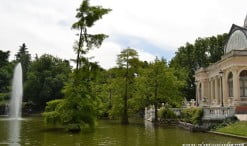 Taxodium distichum frente al Palacio de Cristal en el Parque del Buen Retiro en Madrid