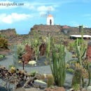 Jardn de Cactus de Lanzarote