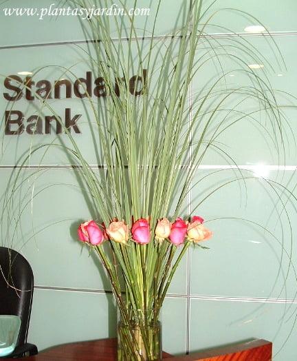 Arreglo floral de rosas naranjas y fucsias con follaje de Cortadera