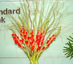 Gladiolos rojos con Sauce y Cortadera