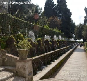 Las cien fuentes en la Villa dEste en Tivoli Roma