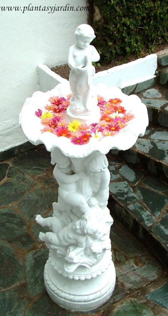 escultura en el jardin con flores de Crisantemos flotando