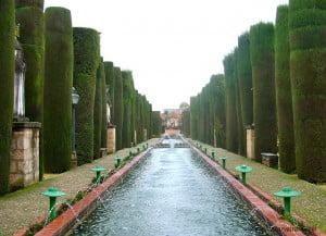 Arte topiario en los Jardines Reales del Alcázar de los Reyes Católicos en Córdoba