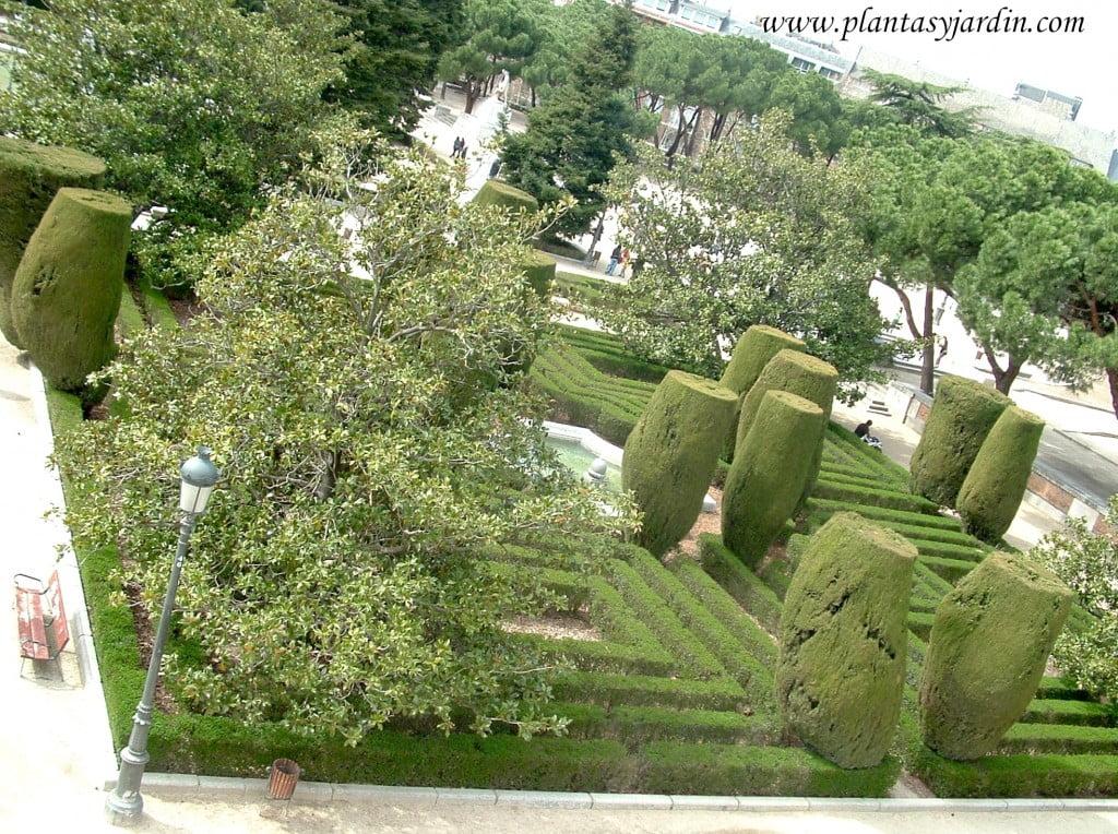 Arte topiario en los Jardines de Sabatini-Madrid.