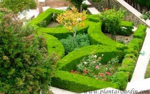 Parterre en los jardines de la alhambra palacio nazar es for Jardines nazaries