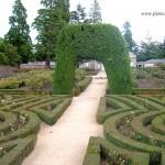 Parterre en la Casita del Príncipe en los Jardines del Real Monasterio de El Escorial.