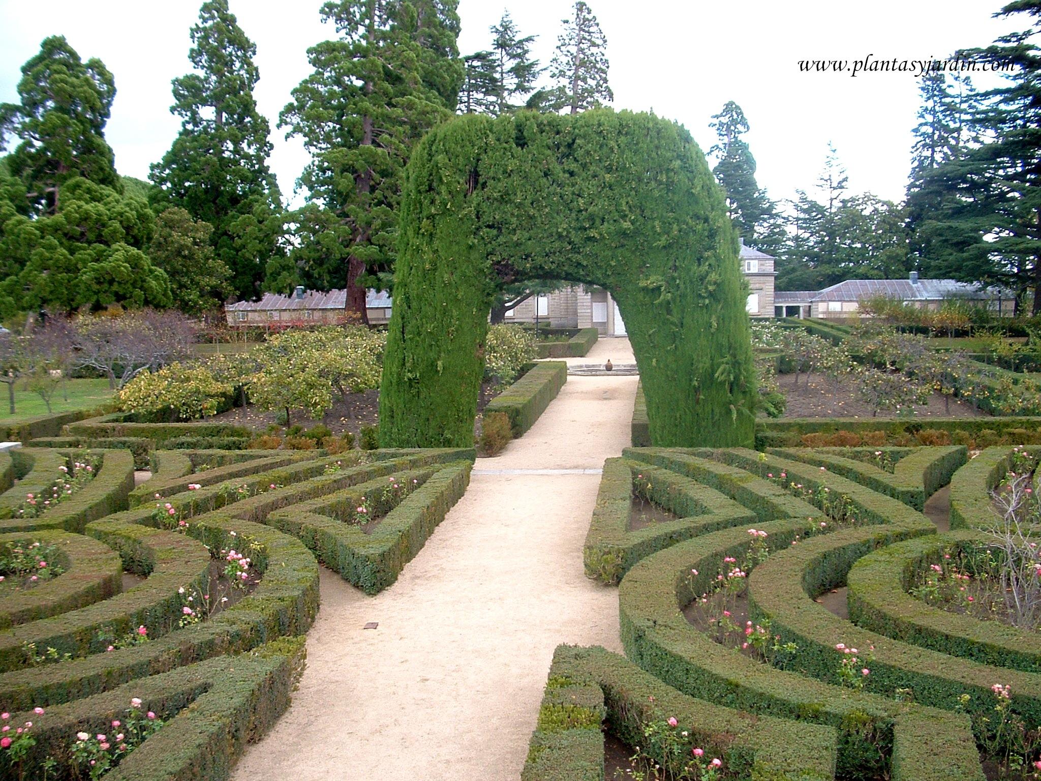 Parterres plantas jard n for El jardin del principe