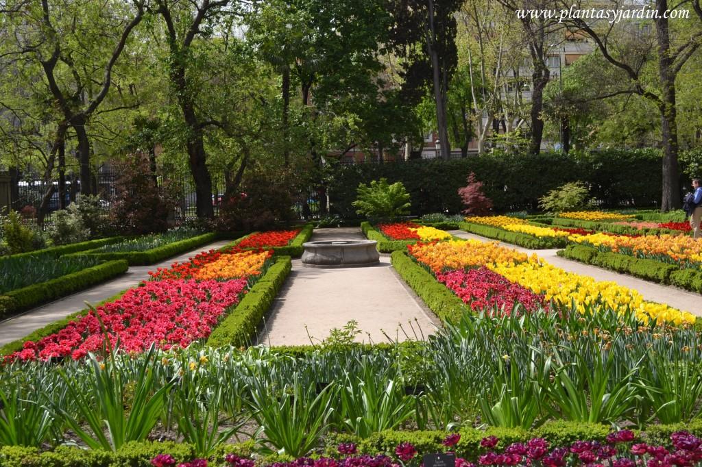 Tulipanes variados en el Real Jardín Botánico de Madrid en primavera.