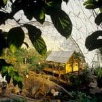 Biomo tropical una cabaña malaya, pequeña parcela completa de vegetales + arrozal