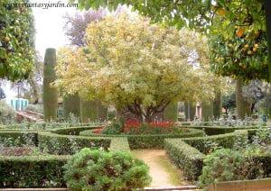 jardines atractivos todo el año
