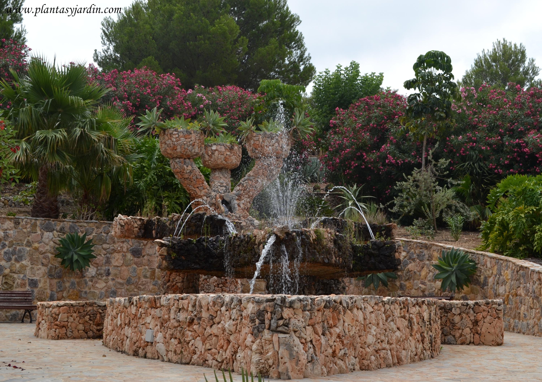 Font Salva en el Jardí Botànic Cactus D'Algar