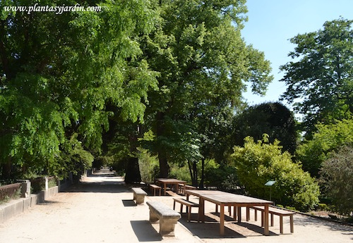 área reservada para la divulgación científica en el Real Jardín Botánico.