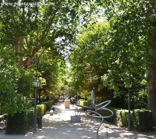 exposición Rodeando el Espacio de Aitor Urdargarin en el Real Jardín Botánico de Madrid.