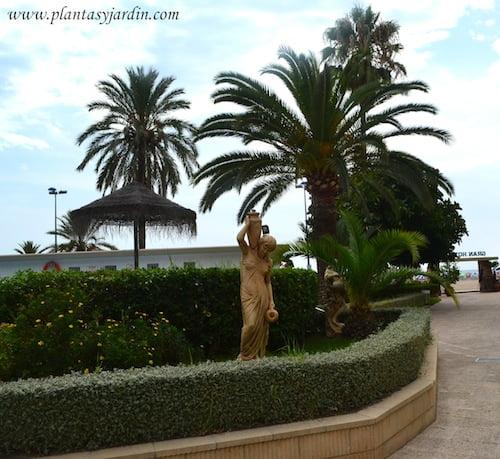 jardines frente al mar, seto de Teucrim.