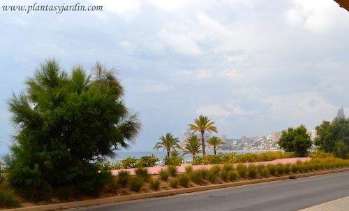 paseo marítimo en el Mediterráneo.