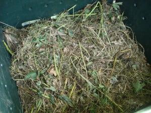 pila de compost. Foto: Wikipedia.