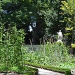 el huerto del Real Jardín Botánico de Madrid, en verano.