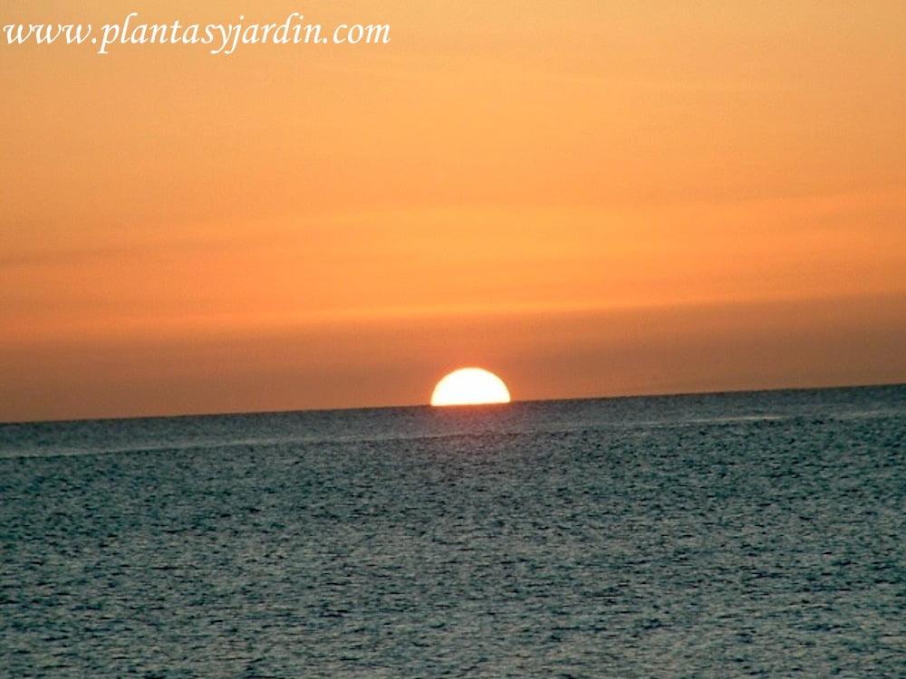 puesta del sol en el verano