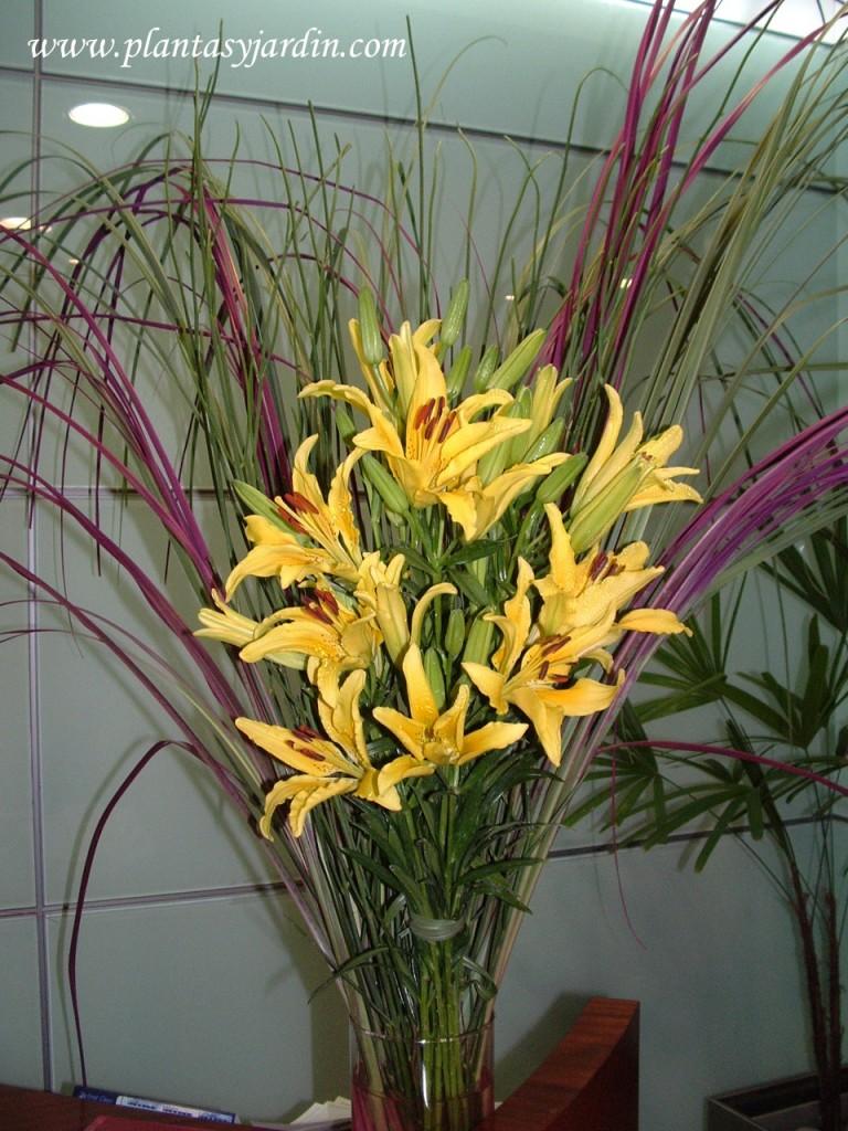 Liliums amarillos con Cortaderas naturales verdes y teñidas bordeaux.