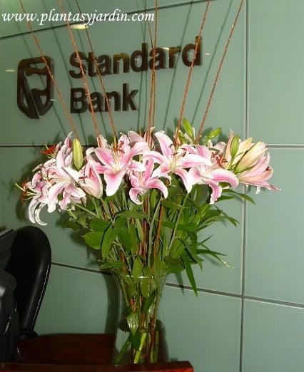 Liliums perfumados con varas de mimbre.