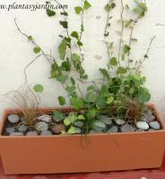 Cómo preparar una jardinera