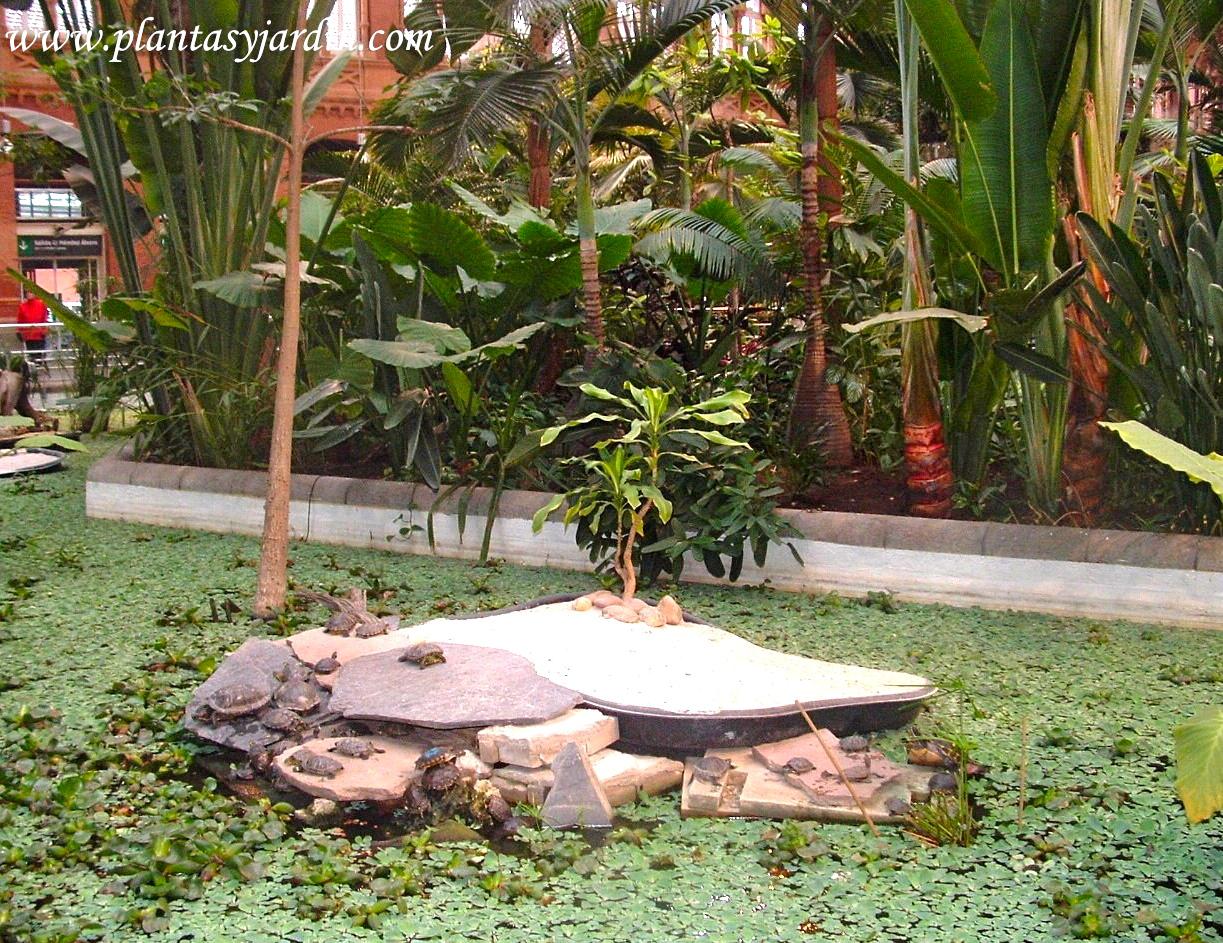 Jardín tropical de la estación de Atocha