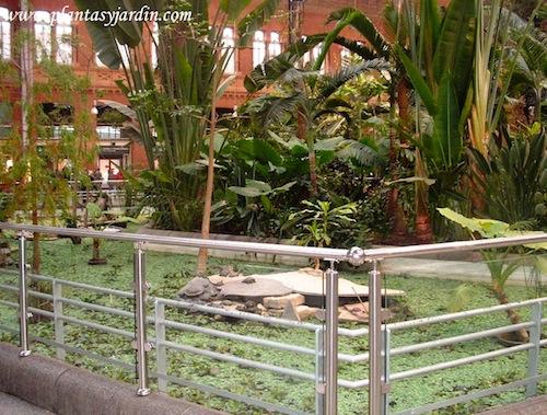 Jardín de invierno de la estación de Atocha