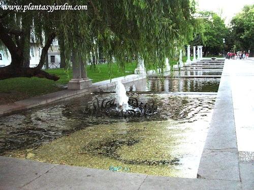 Paseo de los Recoletos con unos 500 mts. es el jardín más antiguo de Madrid