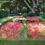 Parterres con Petunias rojas y ejemplar destacado en arte topiario