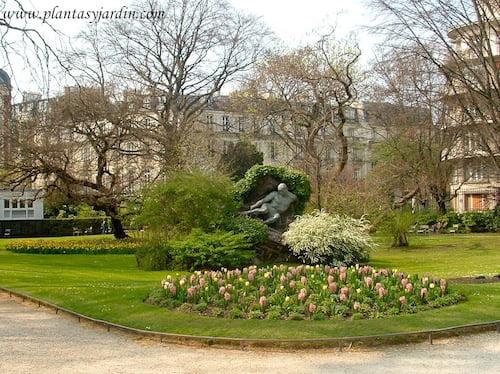 Jacintos rosas y Tulipanes amarillos florecidos a comienzos de la primavera en el Jardin de Luxembourg Paris