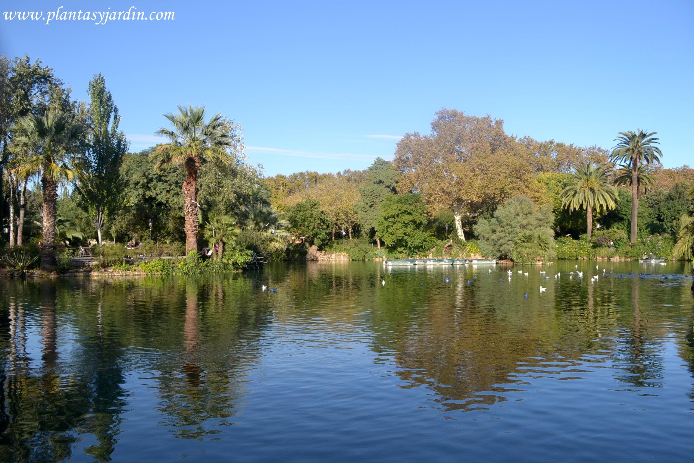 El lago del Parque de la Ciudadela en otoño, Barcelona
