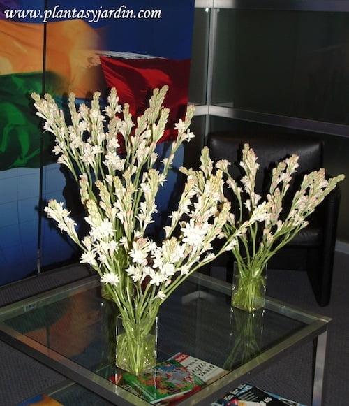 Arreglo floral de flores perfumadas