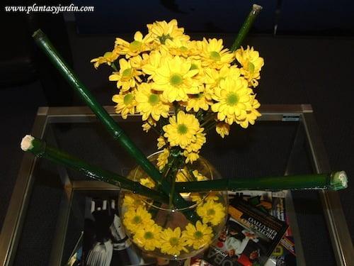Margaritas amarillas en bouquet floral con bambu pintado
