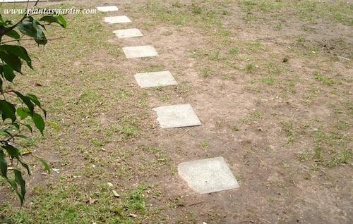 ejemplo de una carpeta cespitosa sobre un suelo compactado