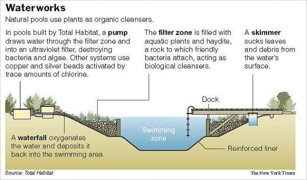 Las piscinas naturales utilizan las plantas como depurantes orgánicos. Foto: Total Habitat, New York Times.