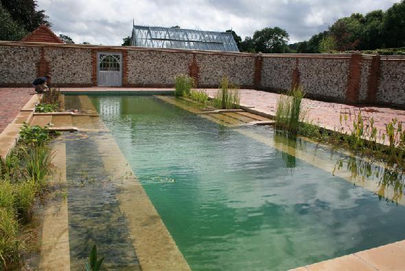 Piscina natural rectángular con plantas acuaticas a ambos lados