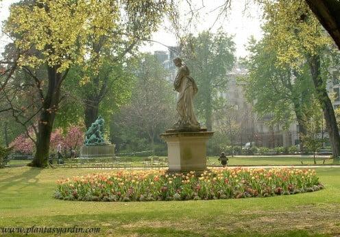 Macizo de Tulipanes amarillos y naranjas a comienzos de la primavera en el Jardín de Luxemburgo-Paris
