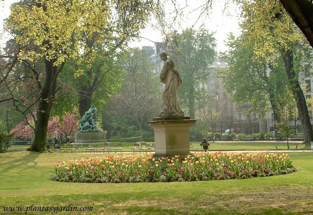 Frases Y Citas Célebres Sobre Jardinería Y La Naturaleza Plantas Y
