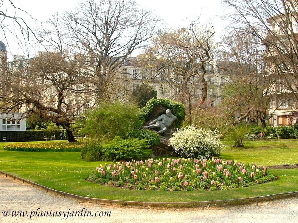 Jardin du Luxembourg en Paris, macizo de Jacintos