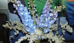 Delphinium-Espuelas de caballero con follaje de Eucalyptus