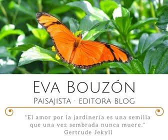 Eva Bouzón Plantasyjardin.com