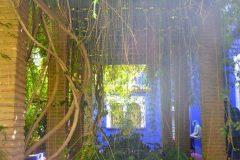Bajo la pérgola, Monstera y en perspectiva típica ventana marroquí