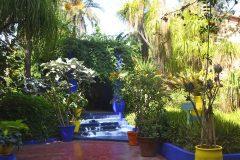 El Jardin de Majorelle lleno de color y plantas un pequeño oasis en pleno centro de Marrakech
