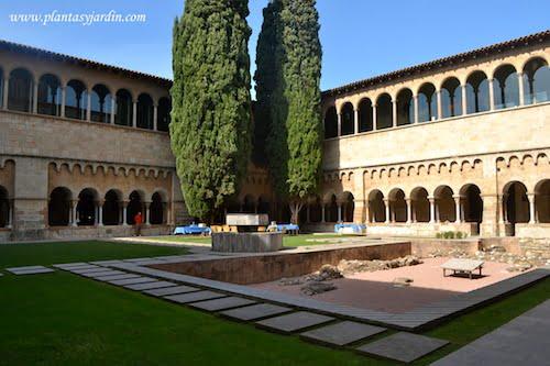 Jardín del claustro del Monasterio de San Cugat