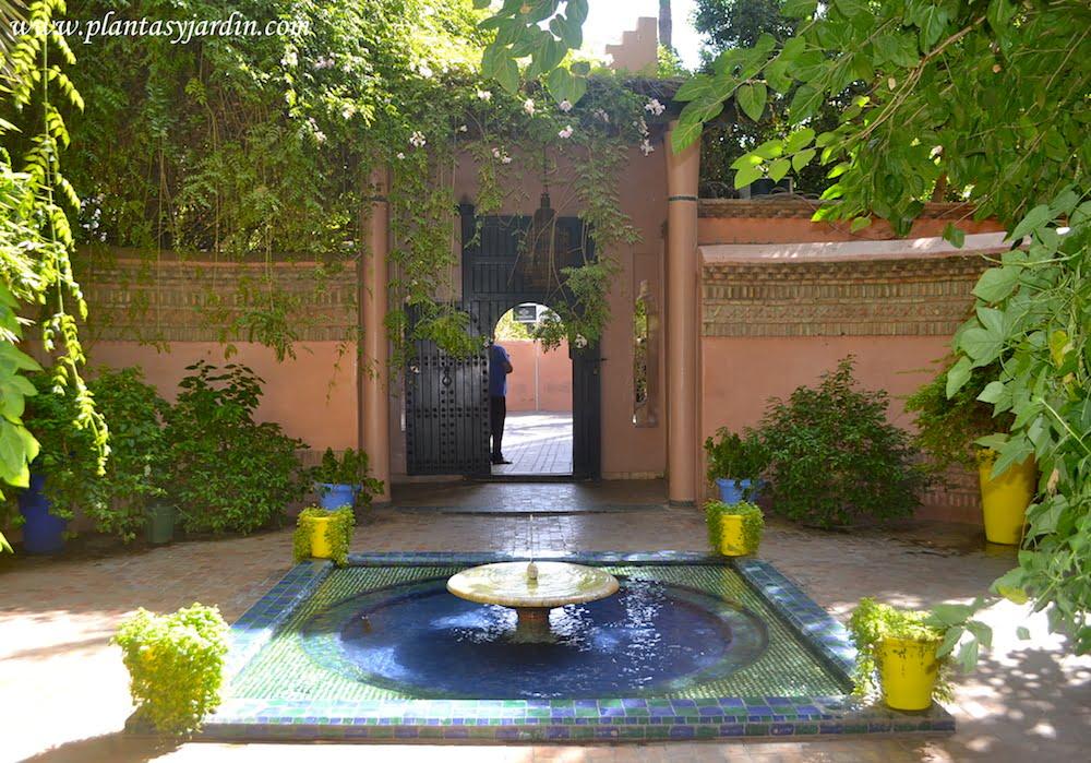 Jardin de Majorelle, Yves-Saint Laurent en Marrakech