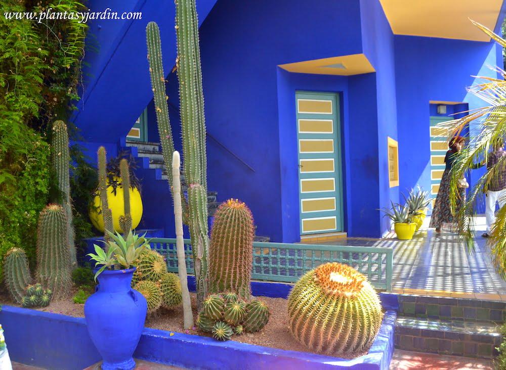 Entrada al antiguo taller del artista rodeado de diversos Cactus grupo de plantas por el cual poseia un peculiar interes